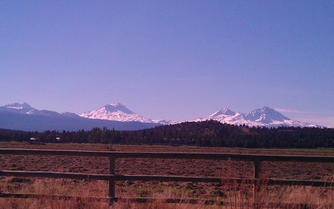 Tumalo, Oregon Real Estate Market Report for April 2010