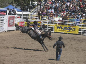 The world-famous Sisters Rodeo rocks!