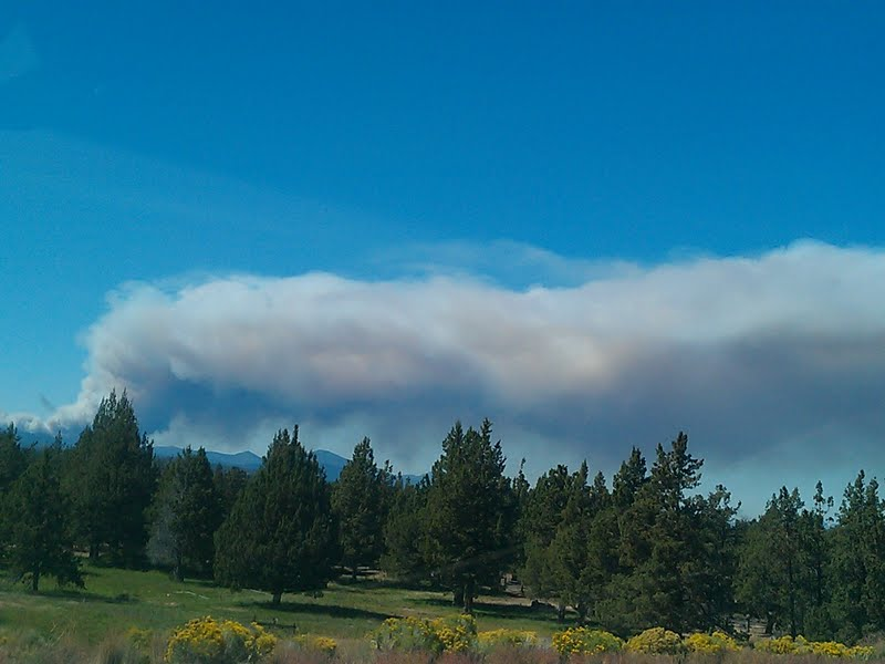 Images from the Pole Creek Fire