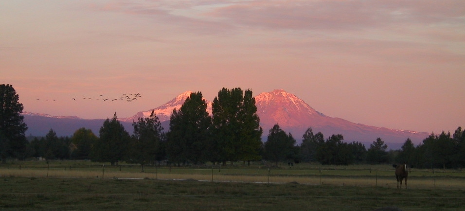 Tumalo Oregon Horse Properties