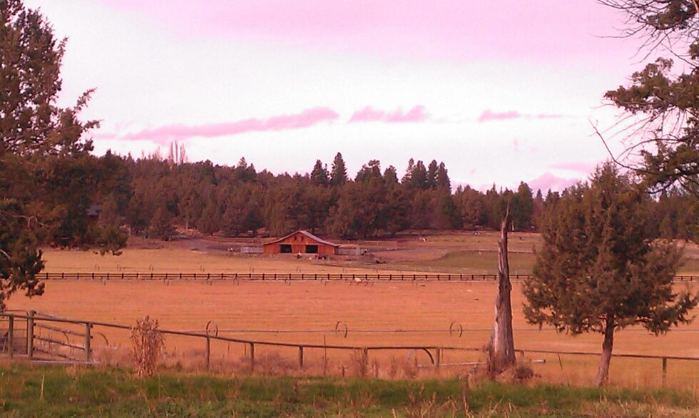 Old Barn in Tumalo