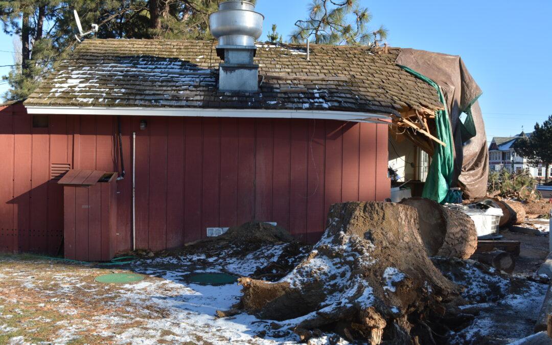 Ski Inn in Sisters Crushed by Massive Ponderosa Pine
