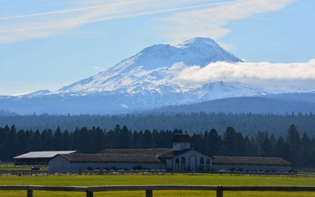 Sisters, Oregon Real Estate Market Report For January 2014