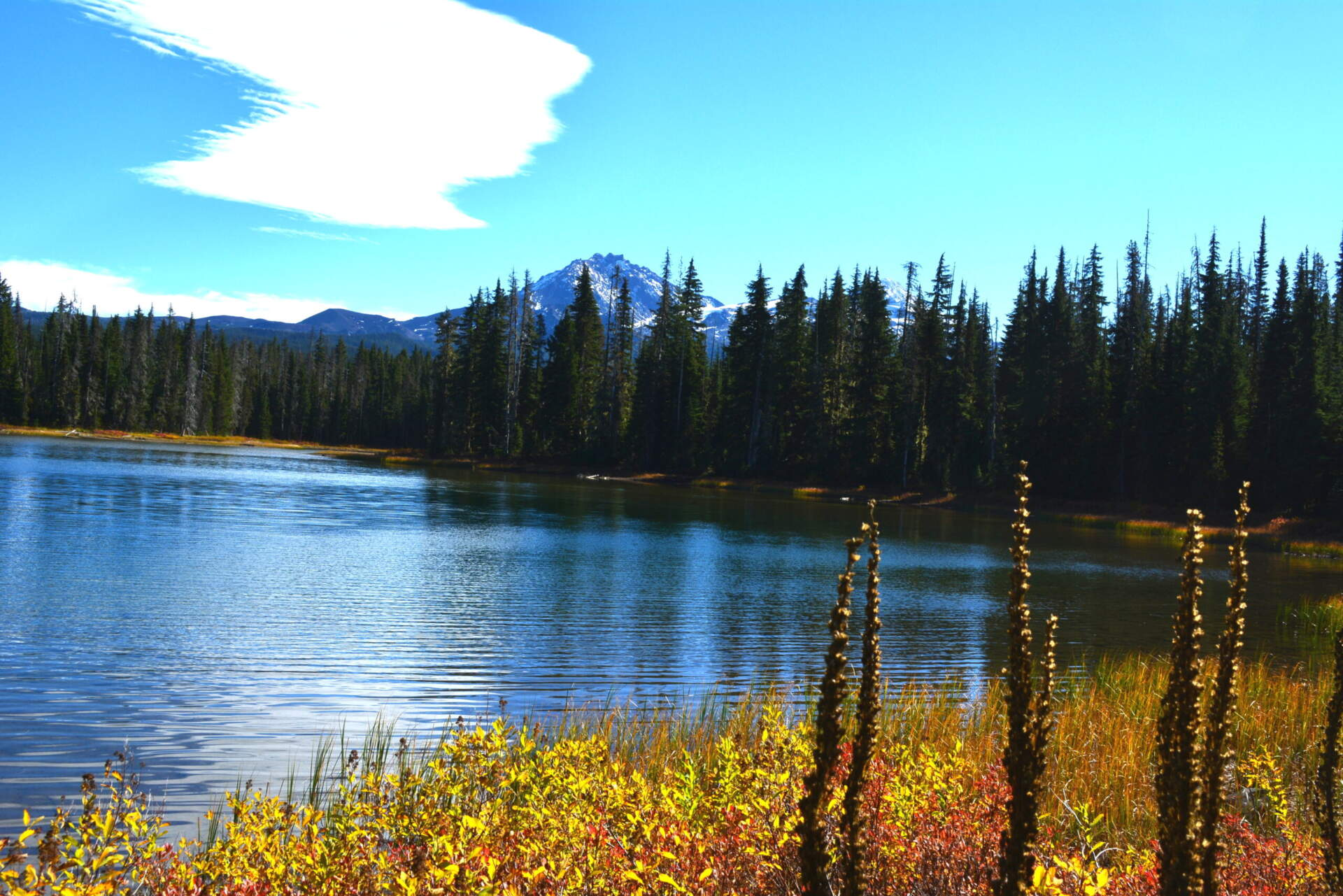 Scott Lake's Fabulous Fall Colors
