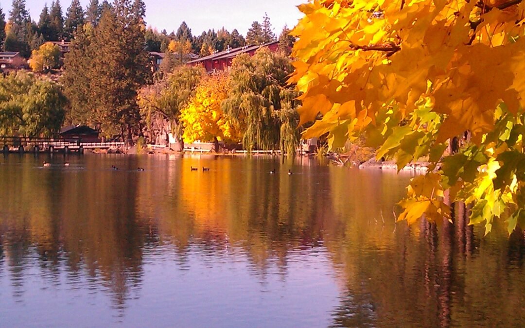 Bend Tops New Forbes List