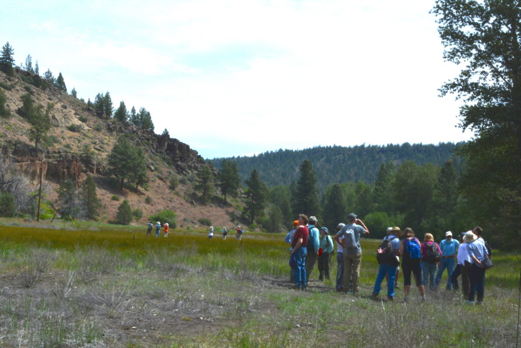Deschutes Land Trust-Whychus Canyon Preserve Addition