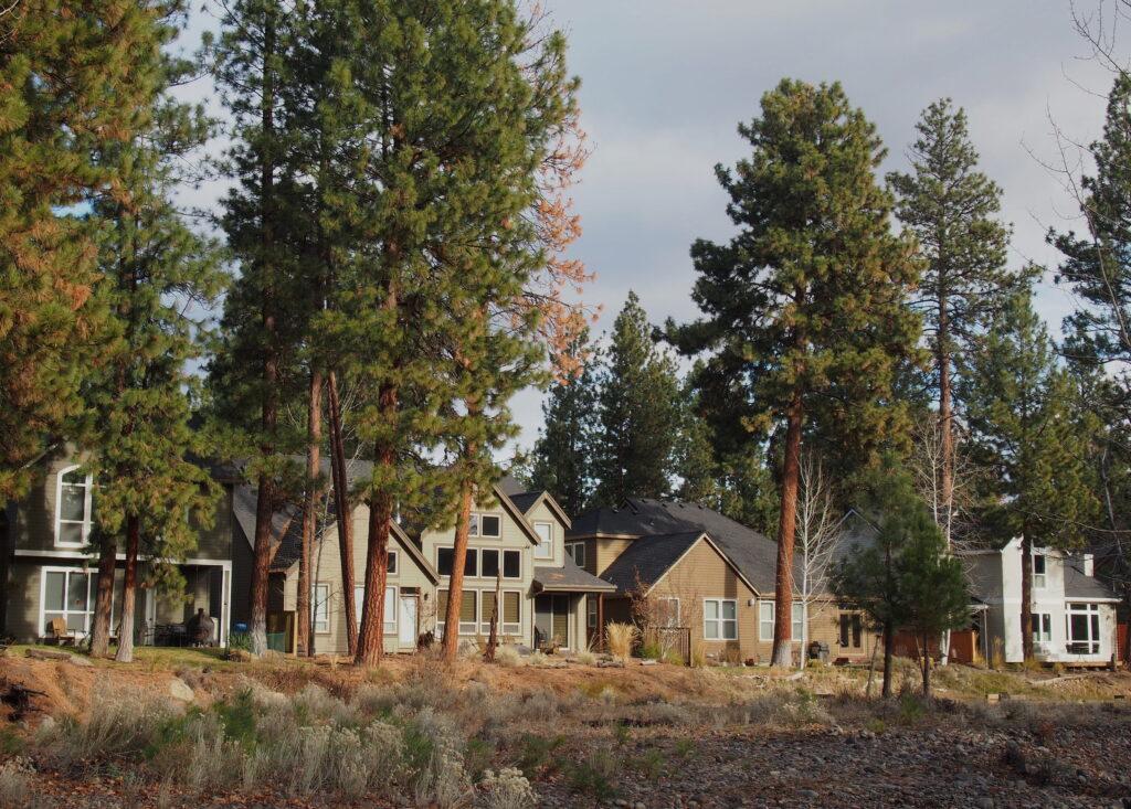 Timber Creek, Sisters Oregon