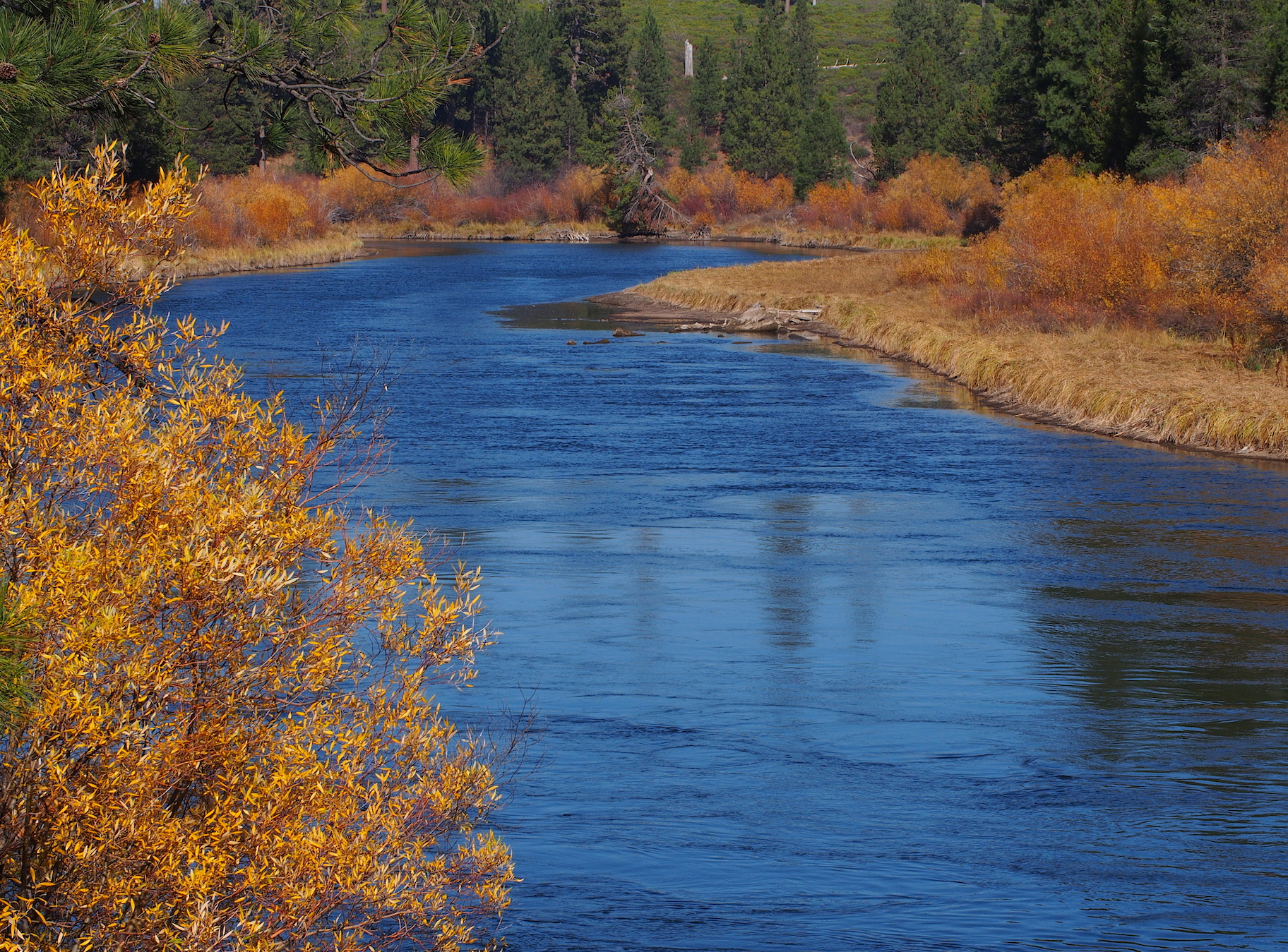 Deschutes River, Benham Falls Trail