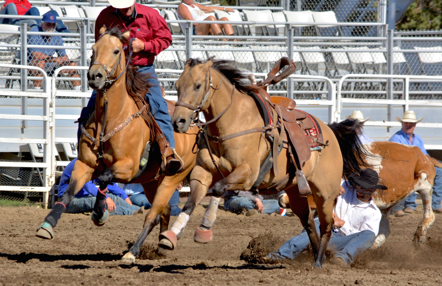 Sisters Rodeo 2017-Slack Day action